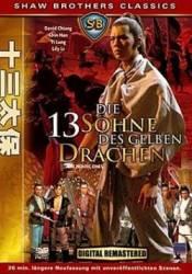 Die 13 Söhne des gelben Drachen (DVDRip)